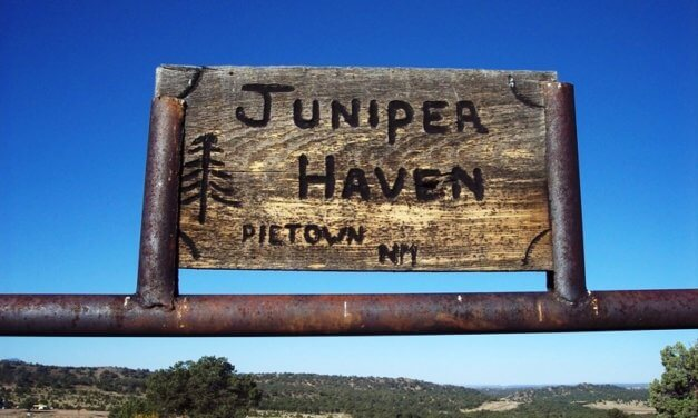 Juniper Haven Cemetery, Pie Town, Catron County, New Mexico