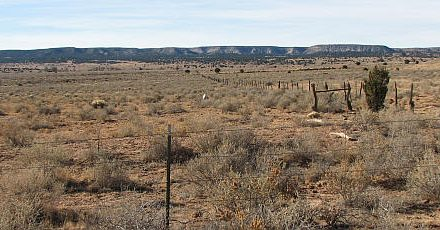 A.A.C. Baca Grave Site, Quemado, Catron County, New Mexico