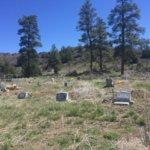 Dulce Community Cemetery, Dulce