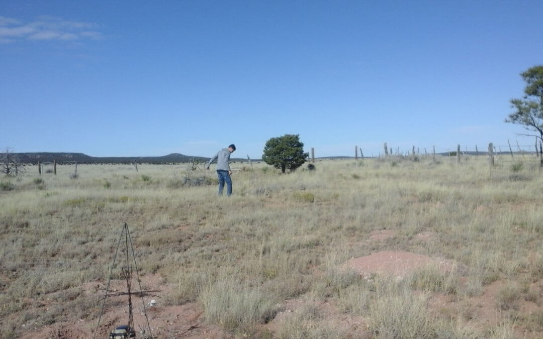 Clements Family Cemetery, McIntosh, Torrance County, New Mexico